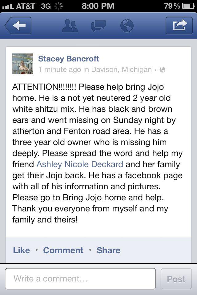 Bring Jojo home