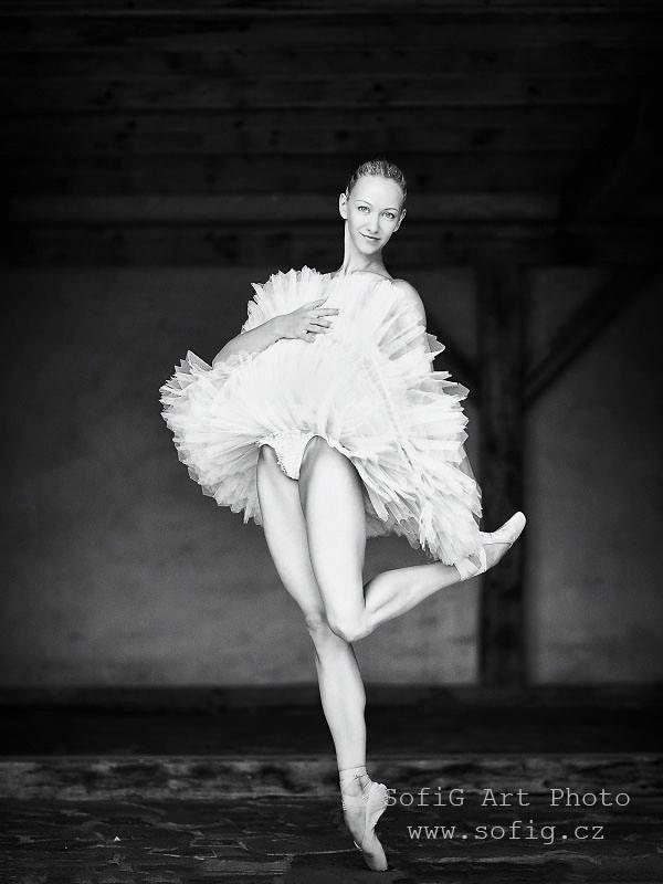 Pin by Bernice Van Der Walt on Brandon Woelfel   Ballet