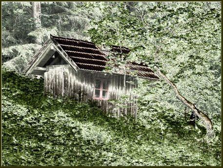 'Allein im Wald' von Rudolf Büttner bei artflakes.com als Poster oder Kunstdruck $18.03
