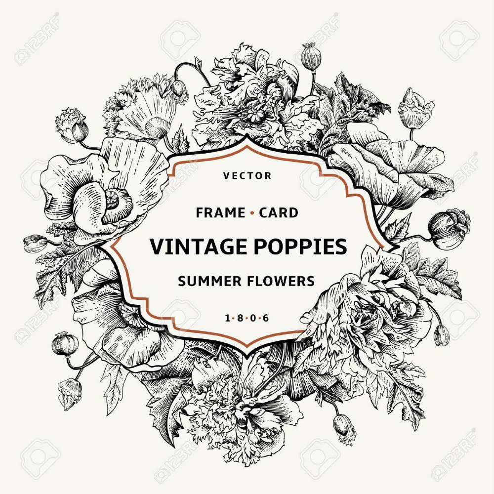 Vintage Floral Frame With Poppies Vector Illustration Black In 2020 Vintage Floral Vintage Drawing Floral Drawing