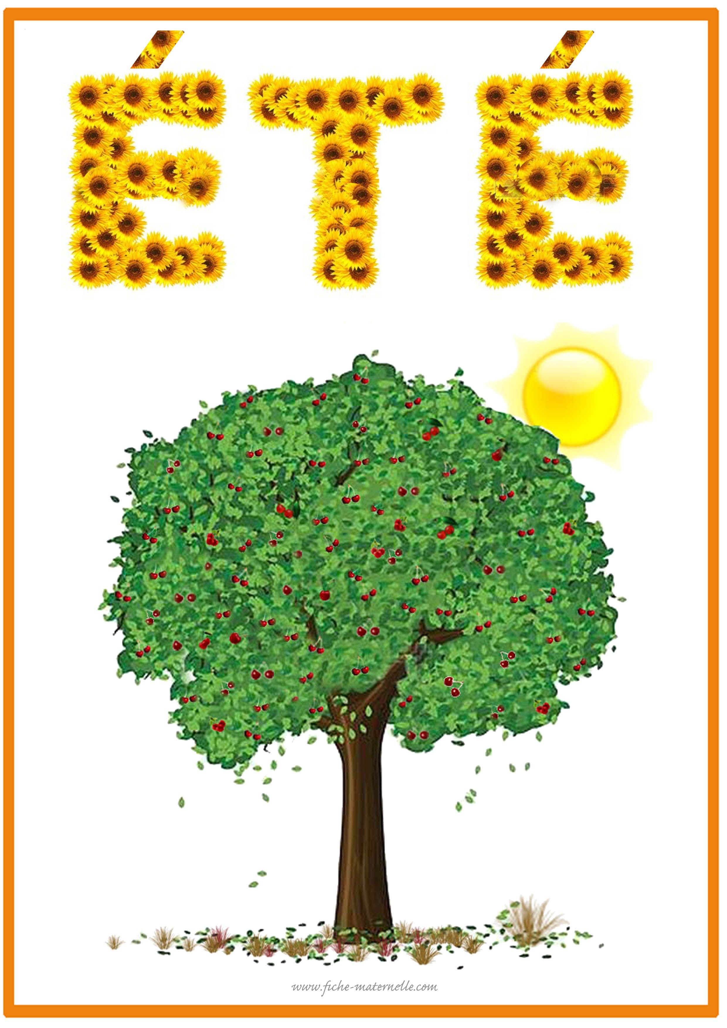 Affichage Des Saisons En Maternelle Saisons Maternelles Affichage Maternelle Les Quatre Saisons