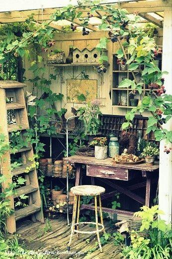 ブラックベリーの這う小屋 の画像|フローラのガーデニング・園芸作業日記
