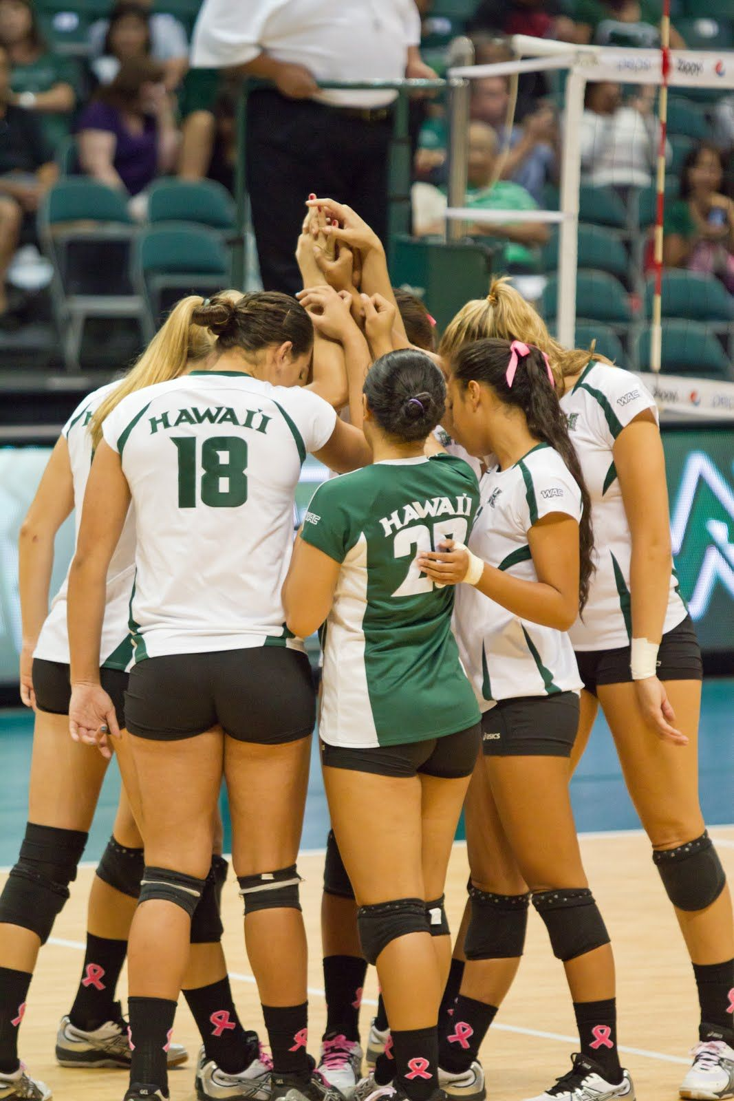 The Mojo Boogie Uh Rainbow Wahine V Utah State October 21 2011 Women Volleyball Favorite Team Volleyball