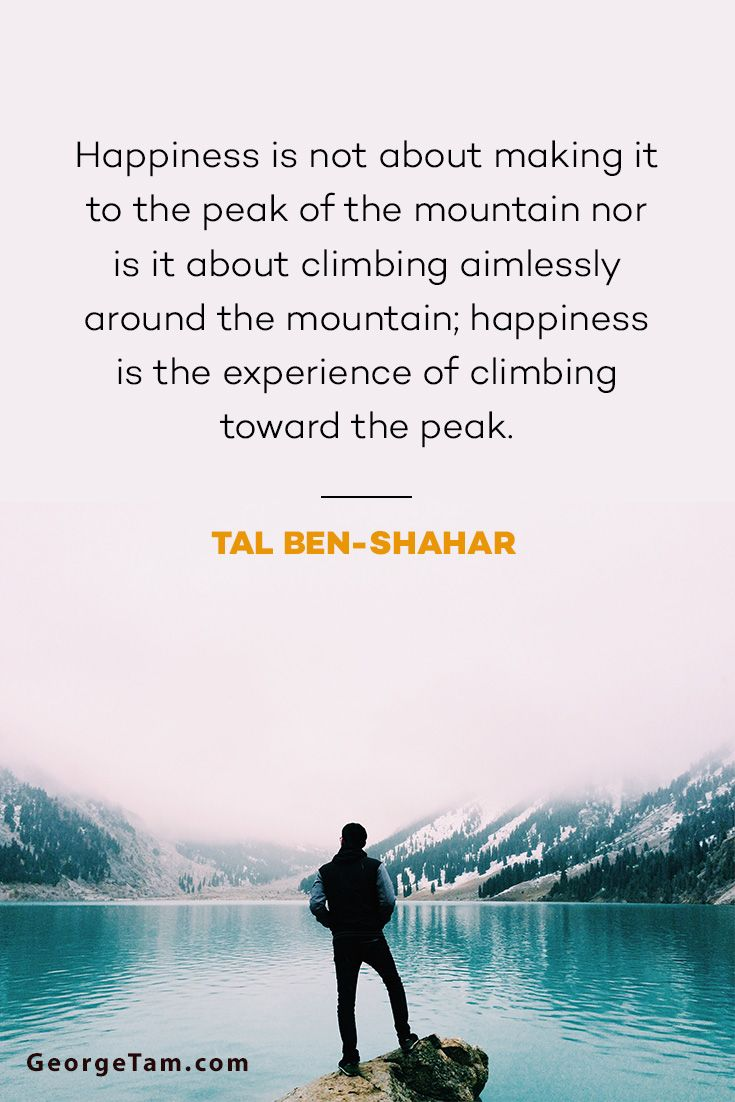 Happiness is not about making it to the peak of the mountain