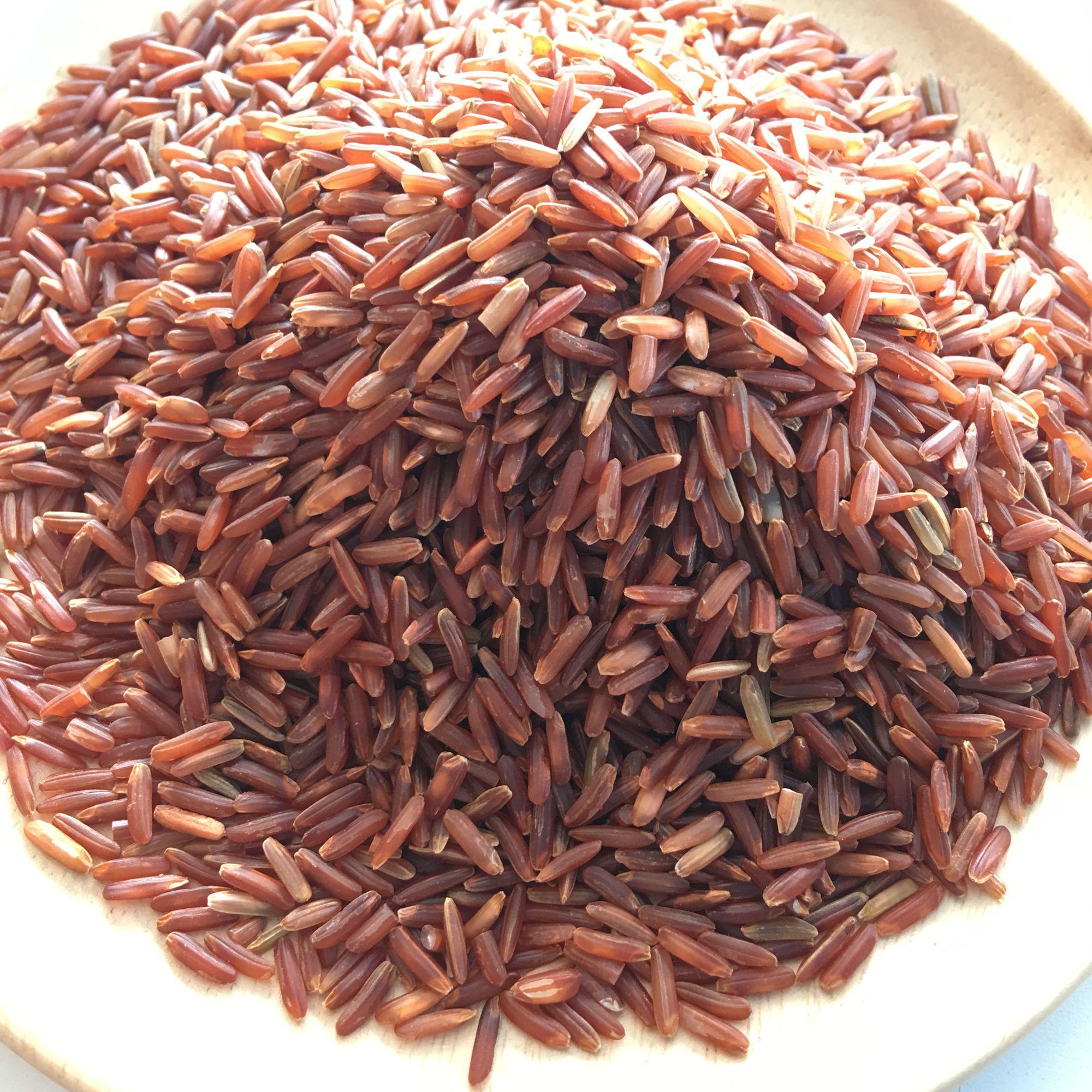 Red Brown Jasmine Rice ข าวหอมมะล แดง ราคาส ง 063 964 4249 ข าว