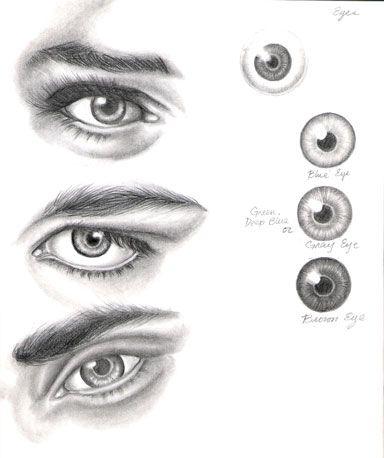 Eye Study by ShamiART on deviantART ART ED CENTRAL FAV ...