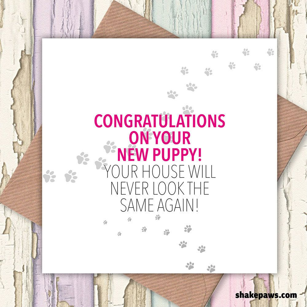 Congratulations on your new puppy your house will never be the congratulations on your new puppy your house will never be the same again card dog lovers greetings cards puppy card new puppy card kristyandbryce Image collections