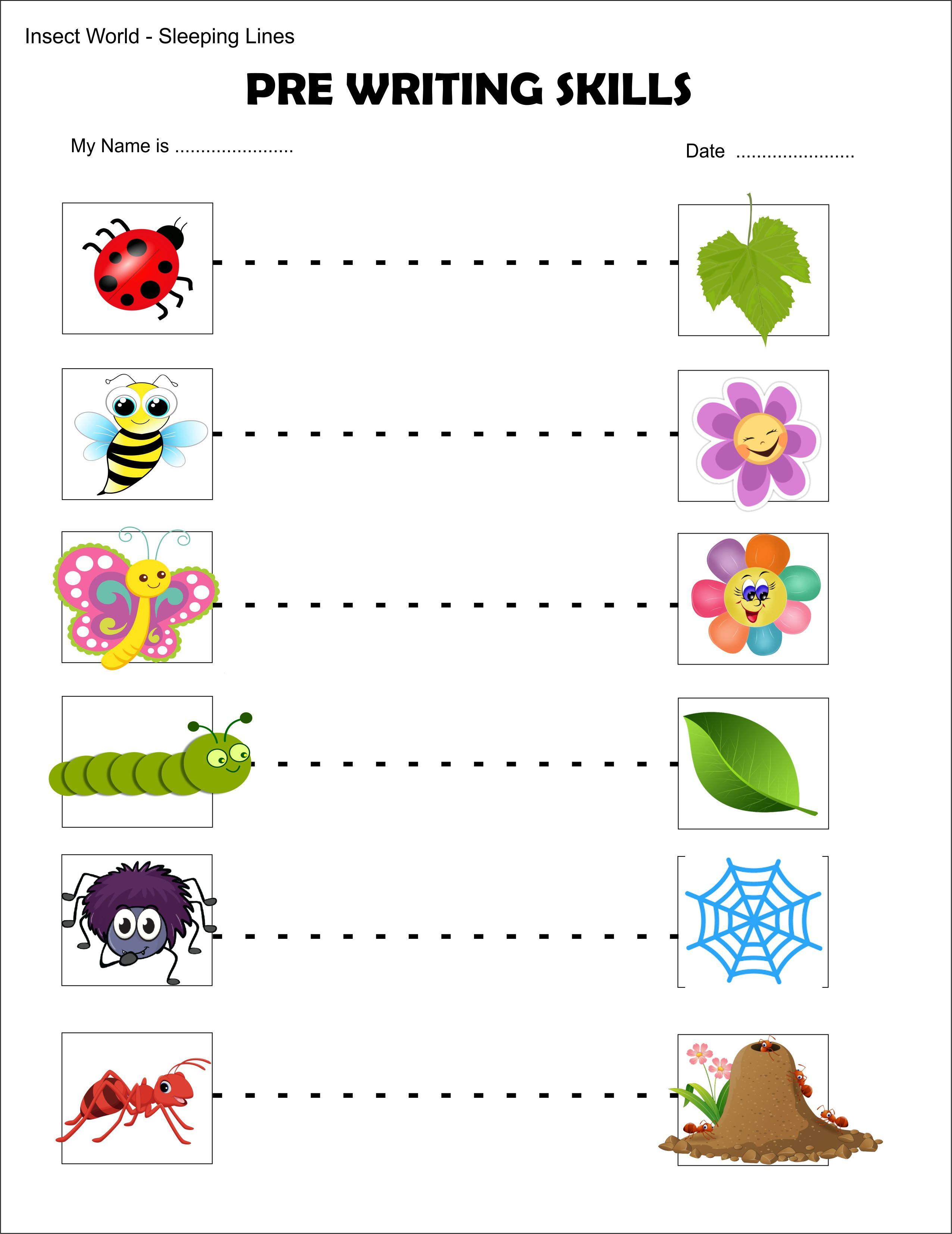 Sleeping Lines Insects Preworkingskills Toddler