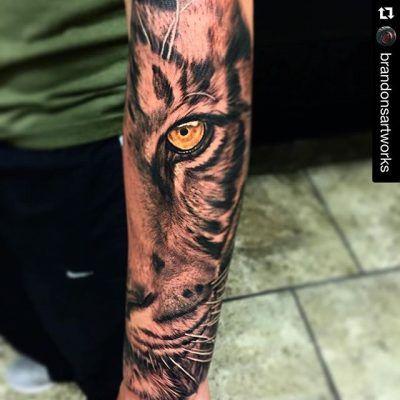 Half Sleeve Tattoos Ideas Tattoospedia Tatuagem Tattoos