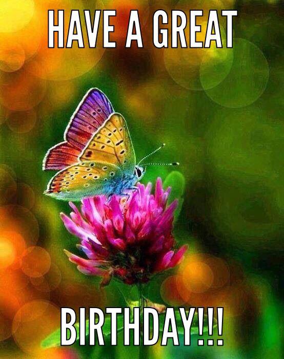 Butterfly Birthday   Rainbow butterfly, Beautiful butterflies