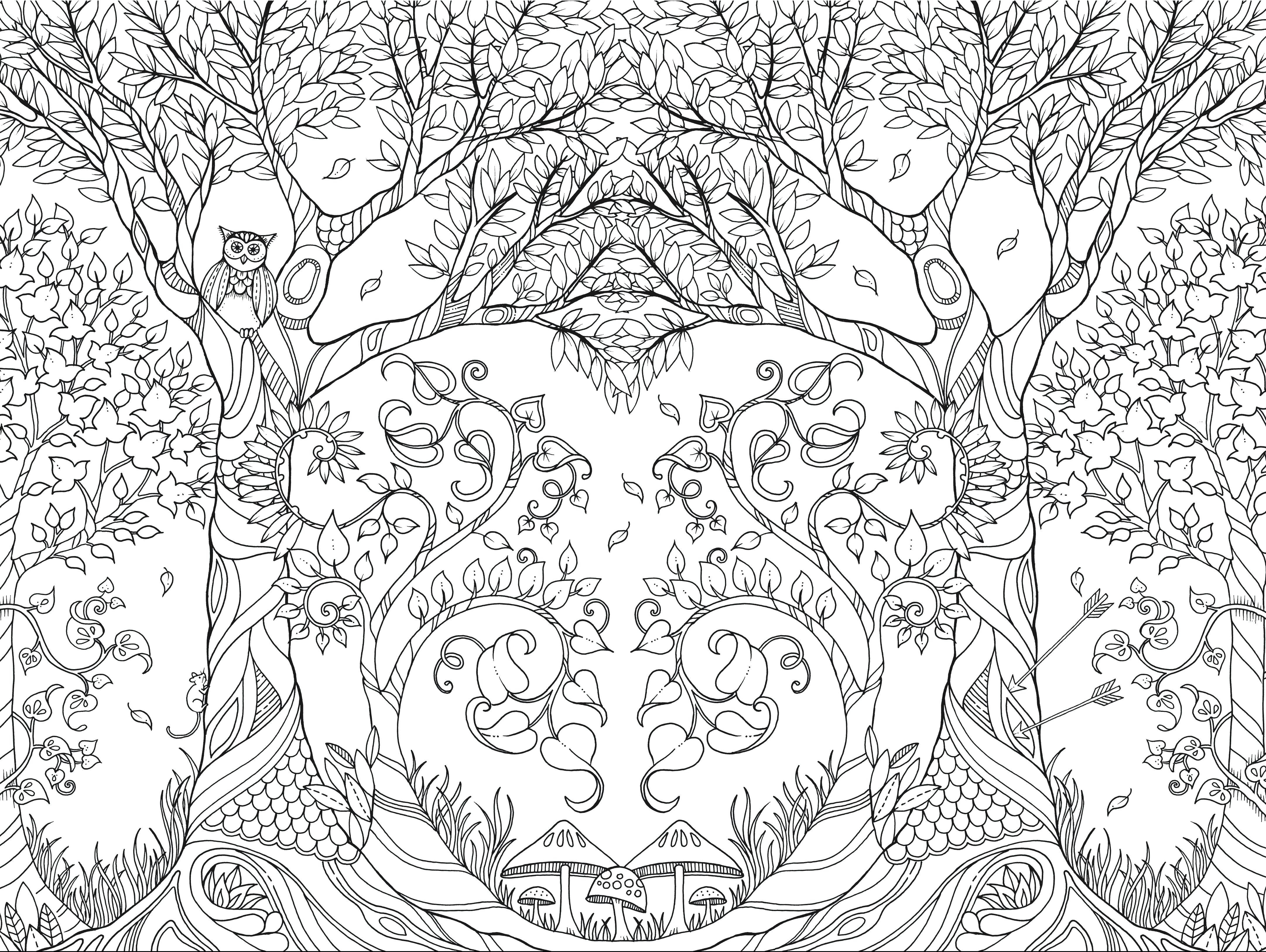 An Illustration From Coloring Book Johanna Basford Best Colouring Pencils Forest Coloring Book Enchanted Forest Coloring Enchanted Forest Coloring Book