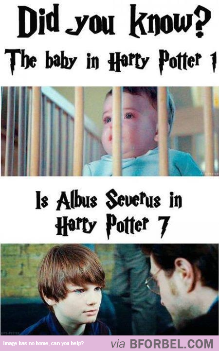He Was Baby Harry Potter Then He Was Harry Potter S Baby Harry Potter Baby Harry Potter Jokes Harry Potter Facts