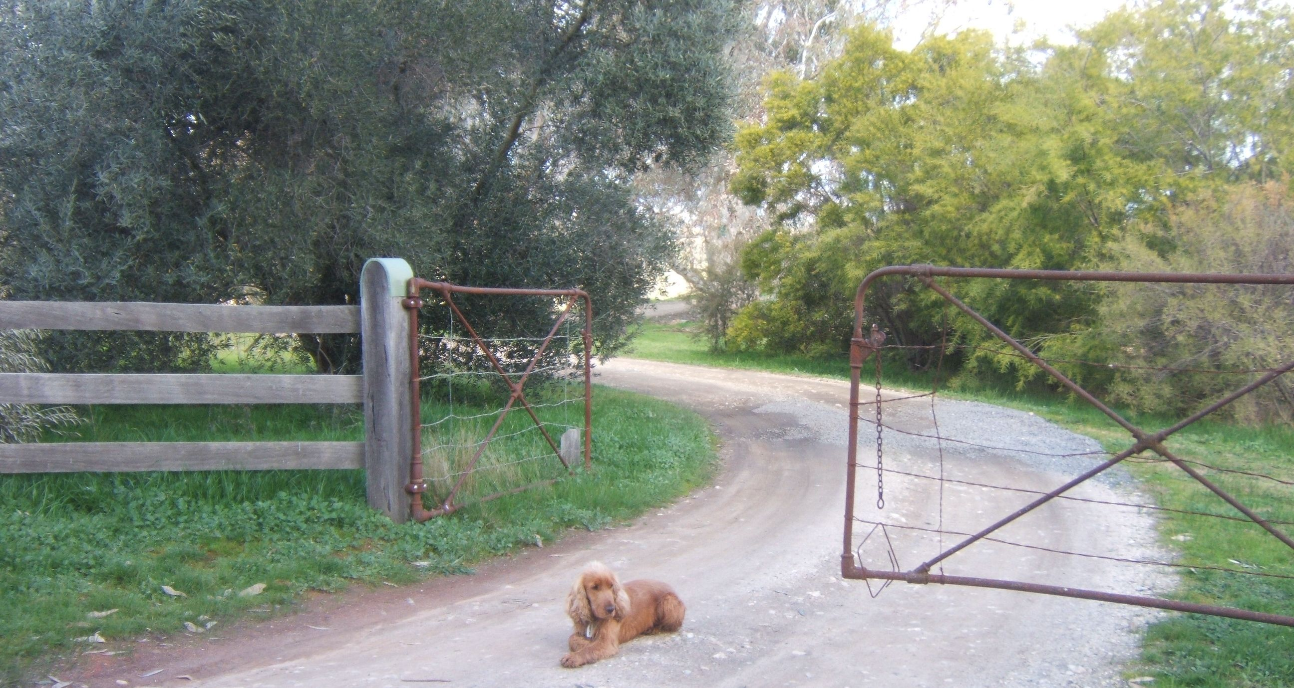 Foster at the front gate