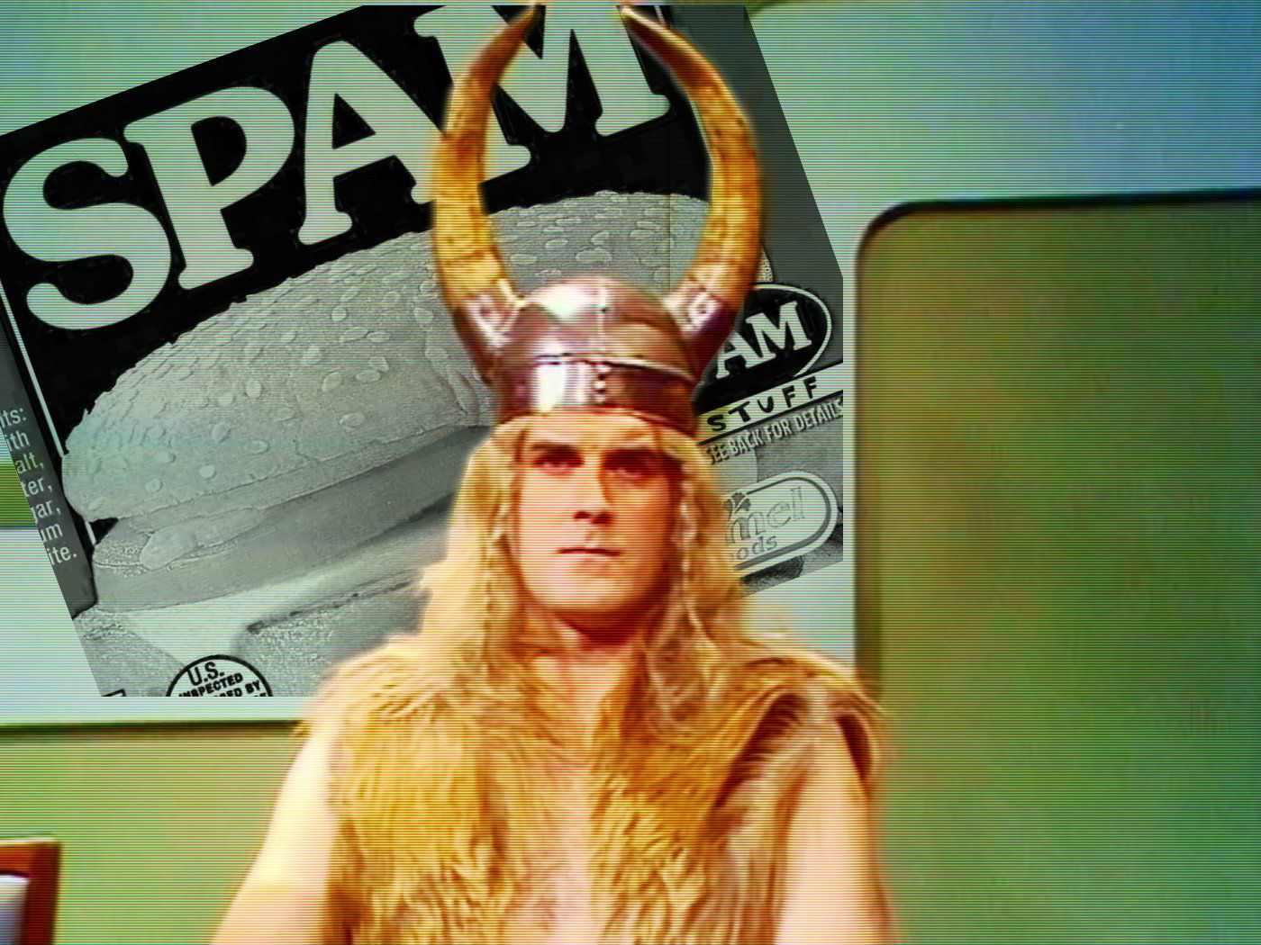 Image result for Monty Python bloody vikings