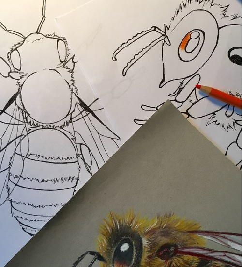 Realistic Honey Bee Coloring Pages