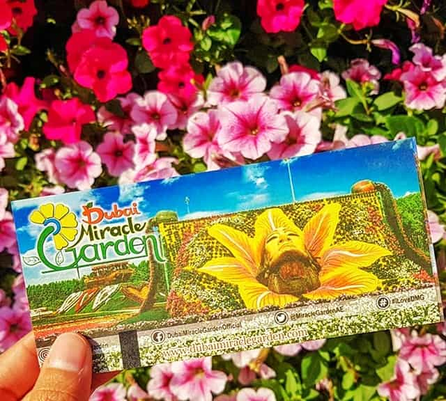 Don't purchase tickets of the Dubai Miracle Garden from