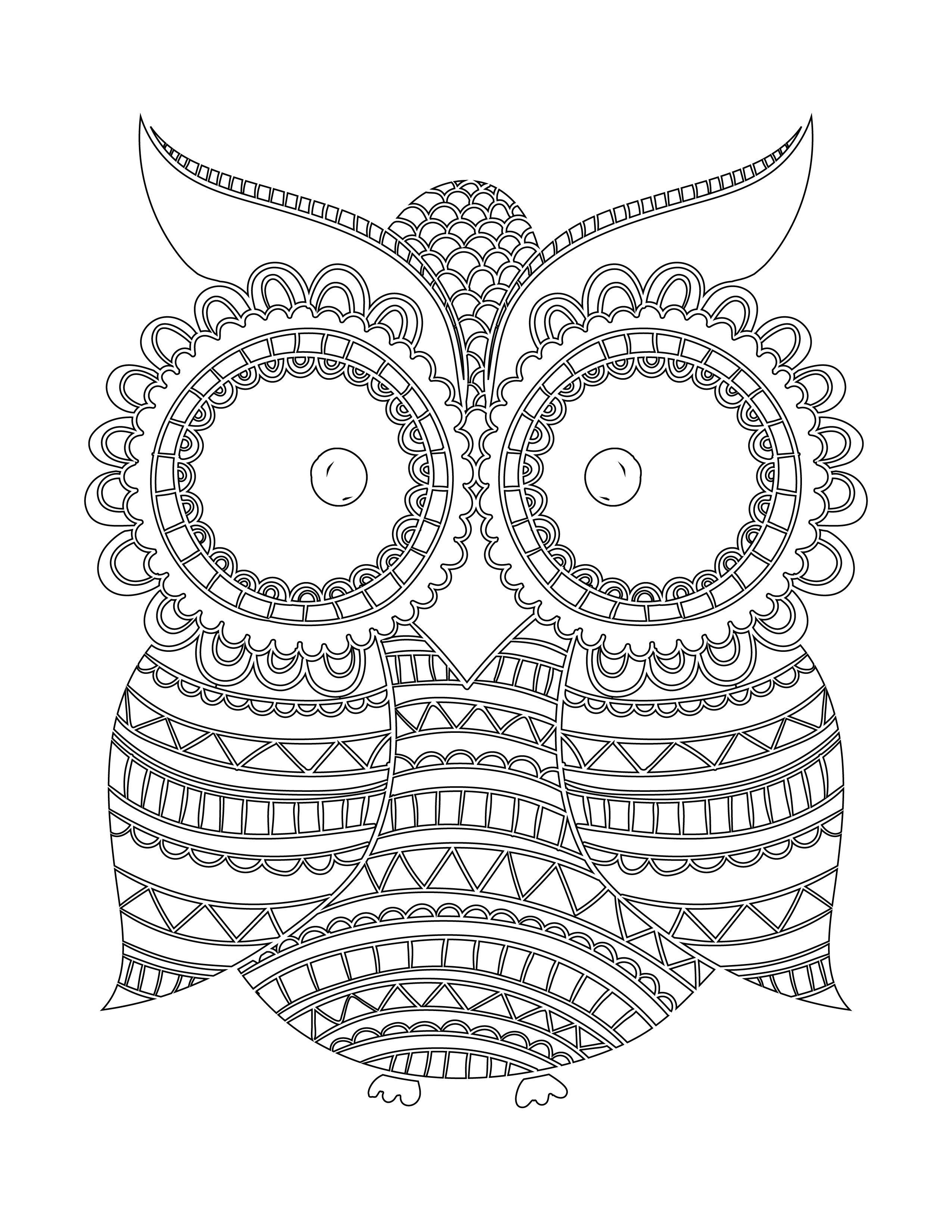 Imprimer coloriage hibou nuit blanche pinterest nuits - Dessins hibou ...