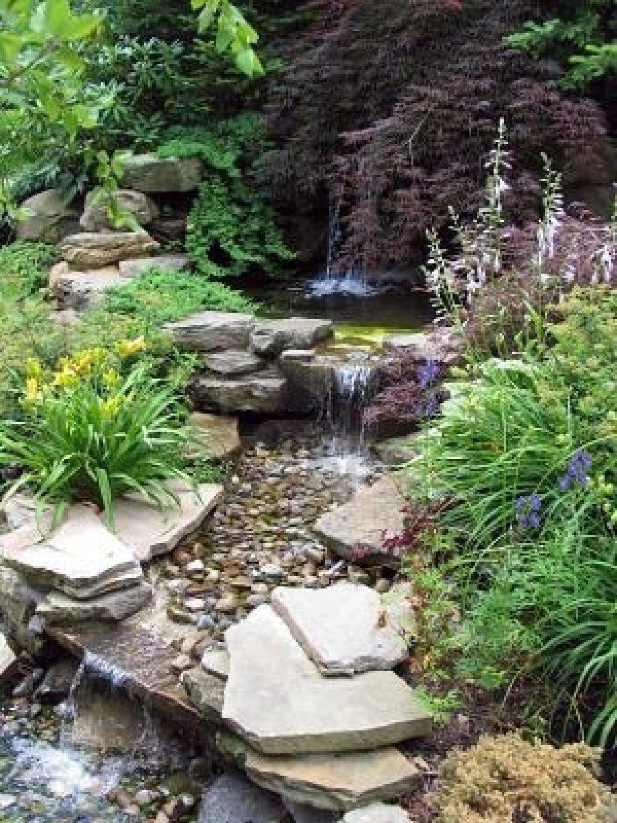 stock photo   pond landscaping, water garden, ponds backyard