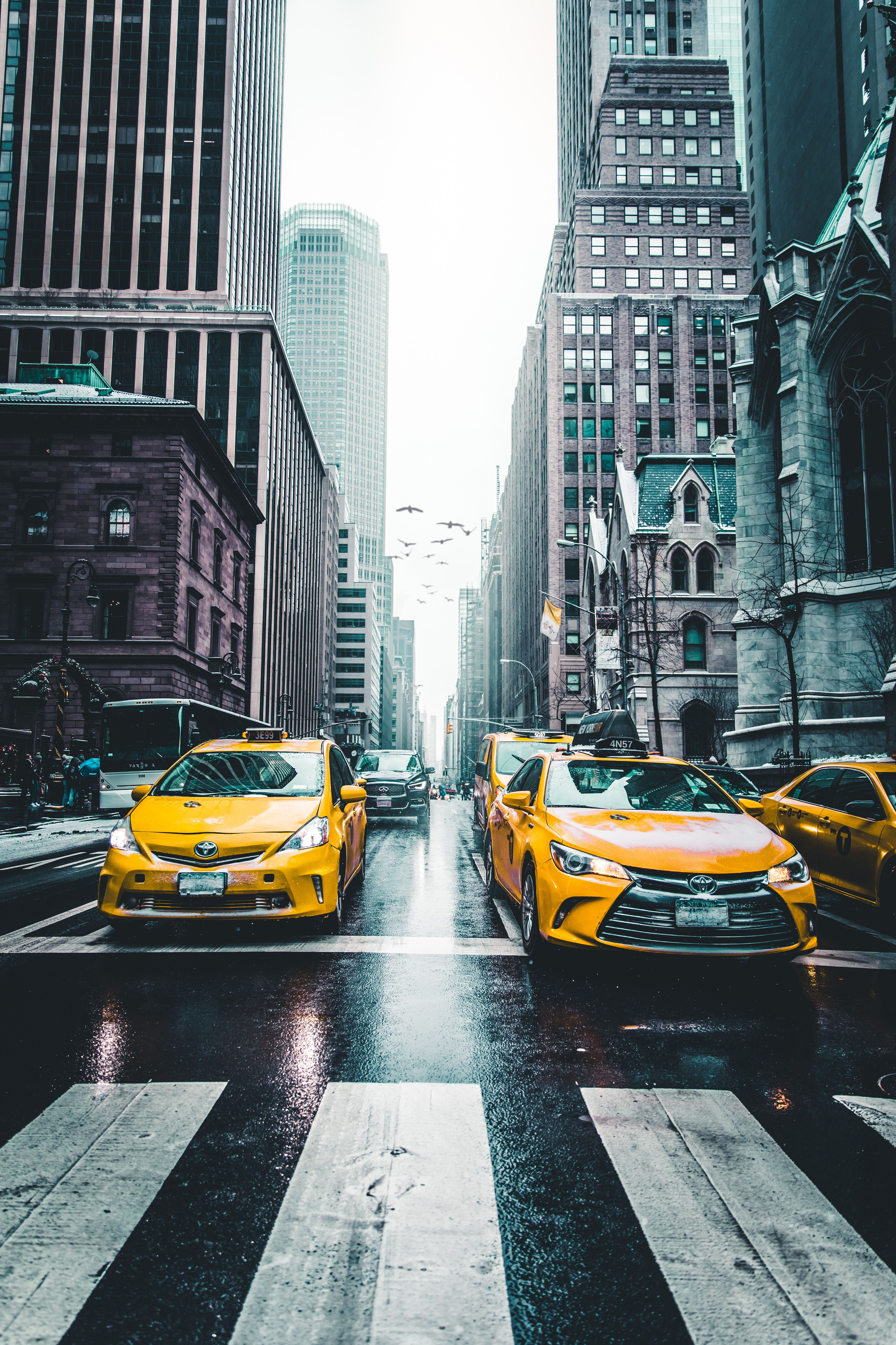 Yellow Taxis In Central New York City Wallpaper Photo Street Photography