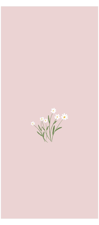 flower minimalist wallpaper