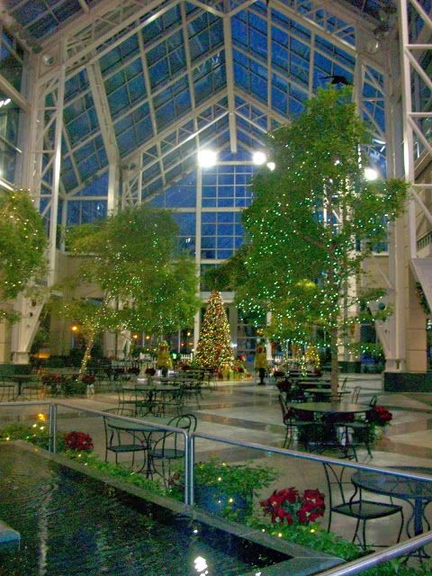 Image result for bausch and lomb winter garden | Adaptive reuse ...