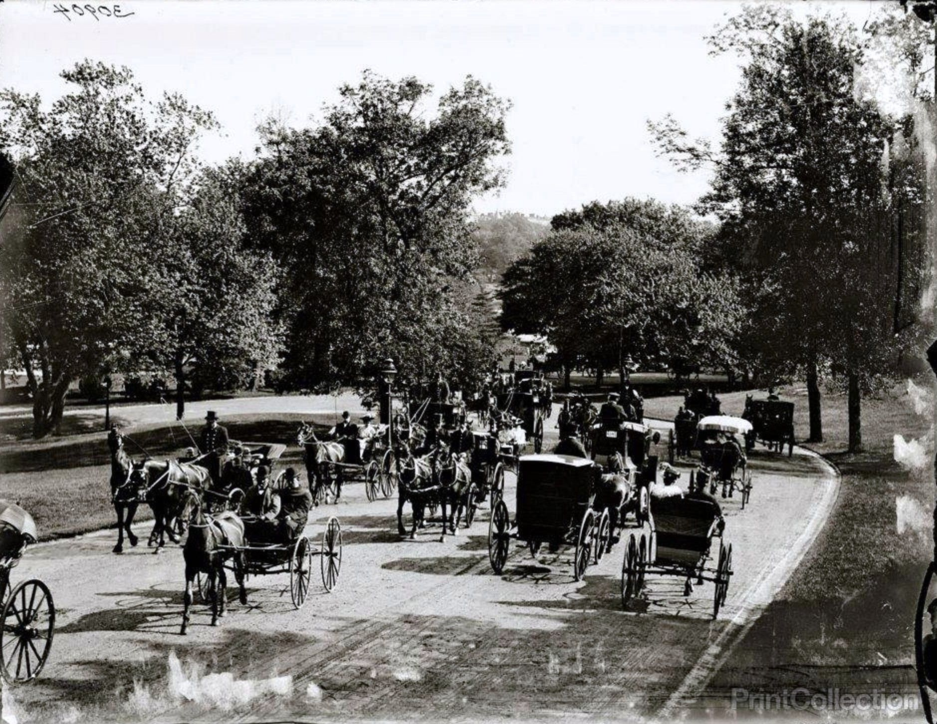 старые фото центрального парка самарканда улицу