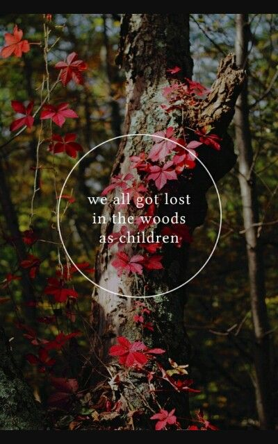 Woods Quotes | Lost Woods Quotes Pinterest Free People Blog Wood And Teaching