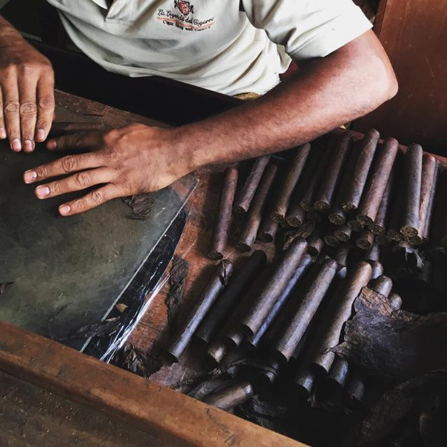 Hand-rolled cigars in santo domingo