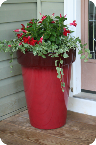 Front Porch Planter From Bhg Denise H H Sawyer Wholesomemommy