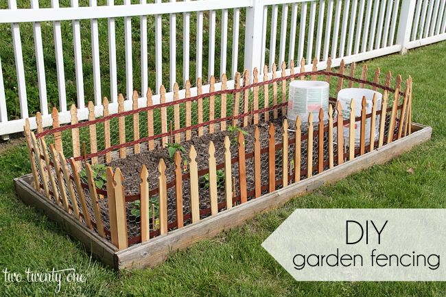 Diy Garden Fencing Fence Small
