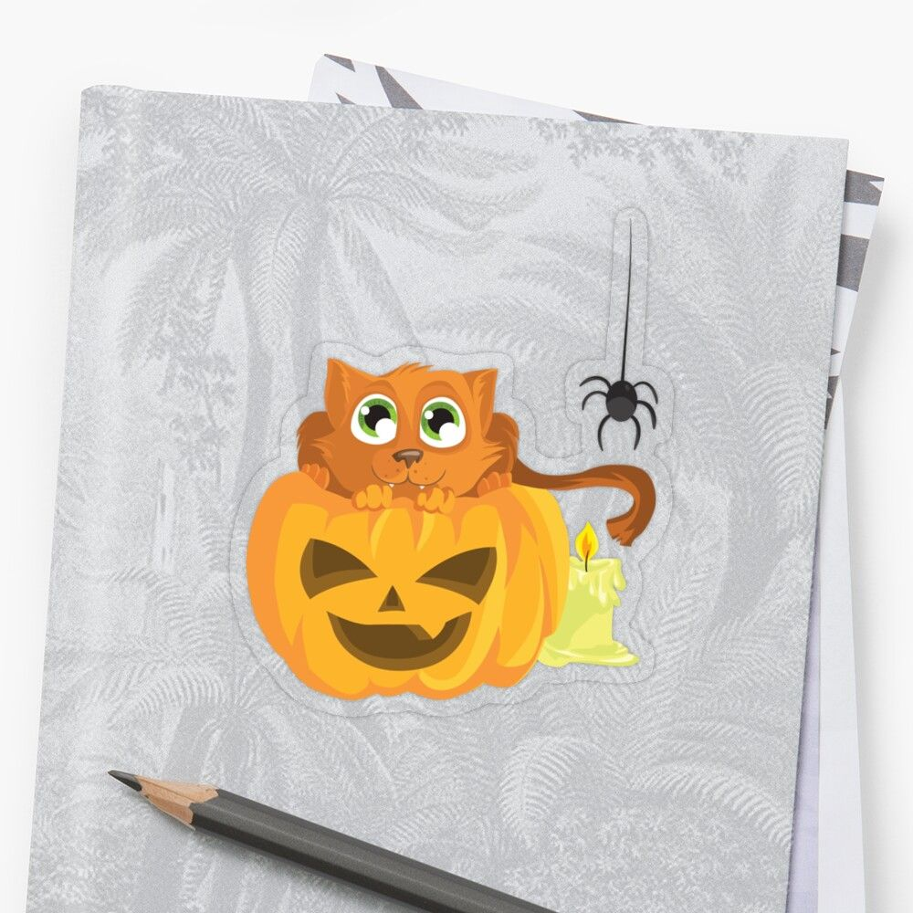 'Ginger Kitten In A Pumpkin' Transparent Sticker by Zerasu #gingerkitten