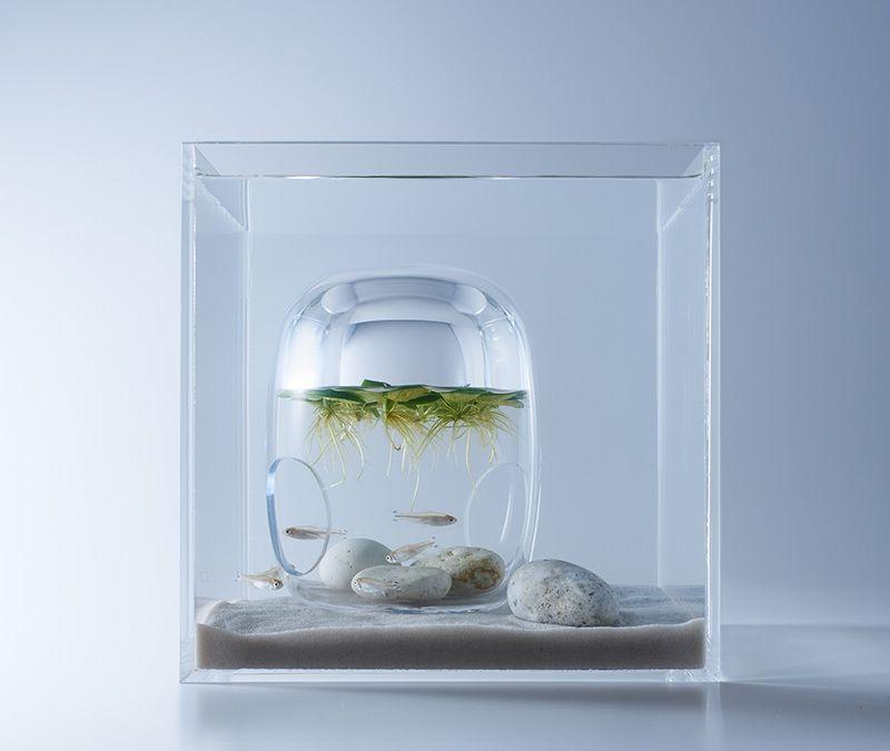 Аквариумы Заполненные с 3D печатное Флора дизайнером Харука Мисава