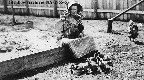 Title Miss Thorsen In Farmyard Wetaskiwin Alberta