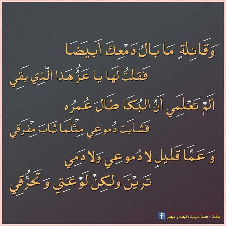 بلاغة شعر اللغة العربية Pretty Words Arabic Poetry Arabic Quotes