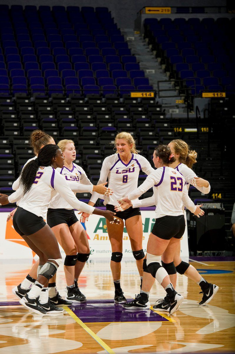 Lsu Volleyball Lsuvolleyball Twitter Lsu Volleyball News Volleyball