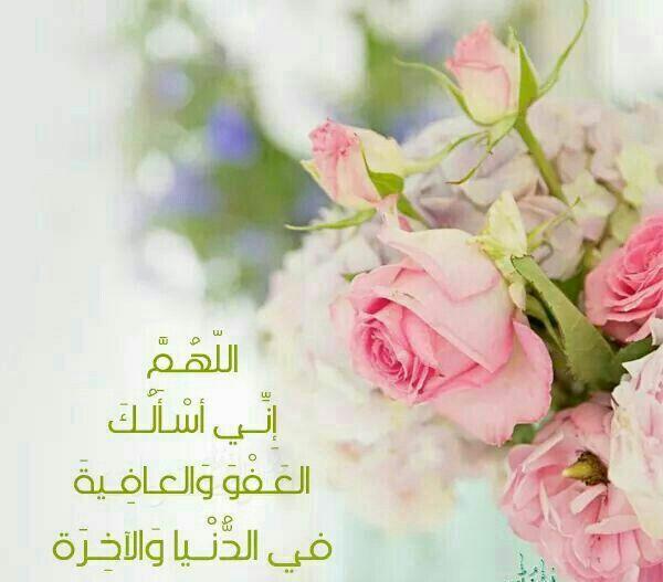 كن من الذاكرين س بحان الله الحمد لله لا إله الا الله الله أكبر س بحان الله وبحمده س بحان الله العظيم Flowers Allah Rose