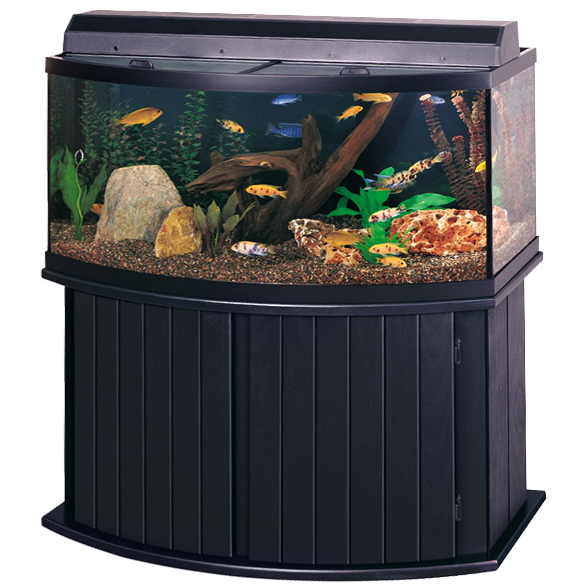 All glass aquarium fish tank - 72 Gallon Bow Front Aquarium 72 Gallon Bow Front Aquarium Kit Black A1147 All Glass Aquariumaquarium Standaquarium Designaquarium Ideasfish Tank