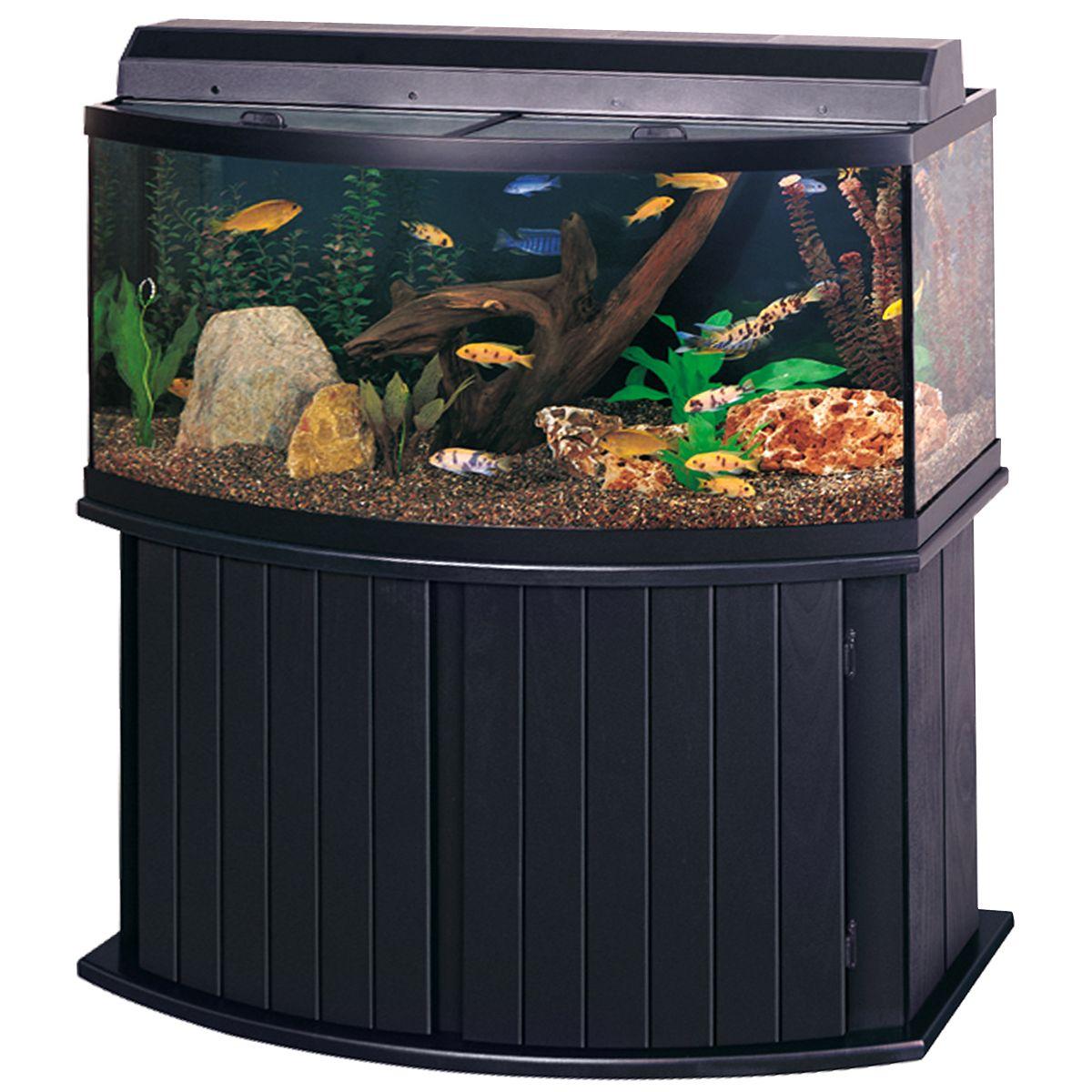 All glass aquarium fish tank - 72 Gallon Bow Front Aquarium 72 Gallon Bow Front Aquarium Kit Black A1147 All Glass Aquariumaquarium Standaquarium Designaquarium Ideasfish Tank