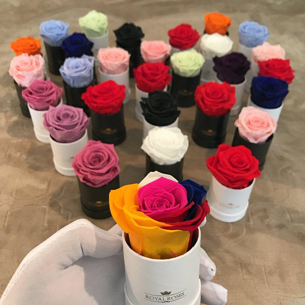 Single Long Lasting Rose Box Lifetime Is Over 1 Year Flower Box Gift Preserved Roses Long Lasting Flower