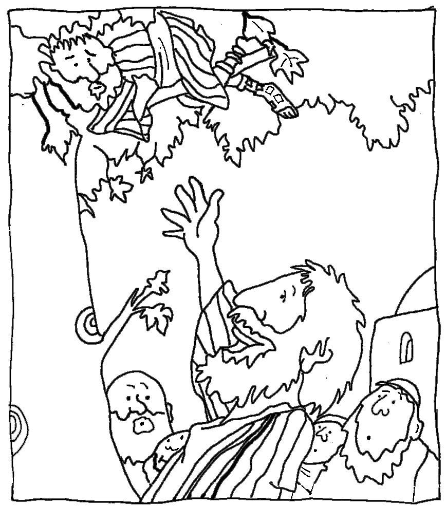 zaqueo coloring pages - photo #44