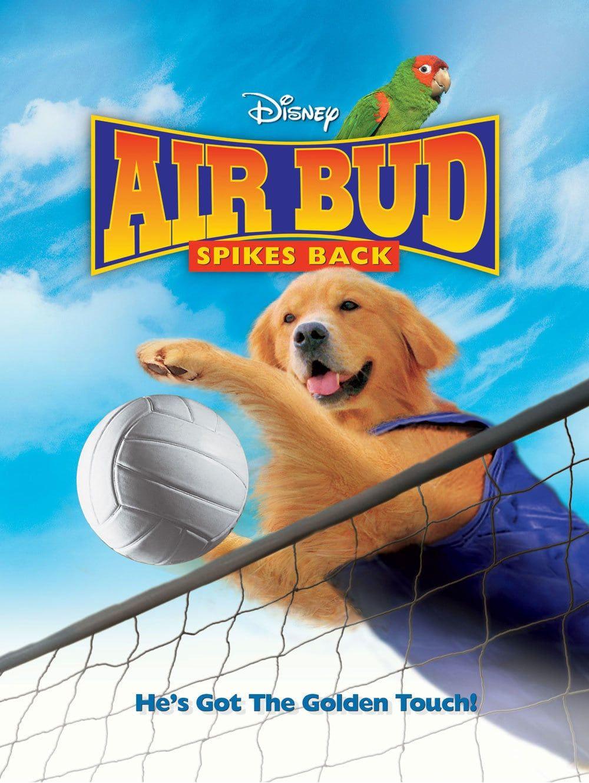 Air Bud Spikes Back Movies Disney Buddies Air Bud Walt