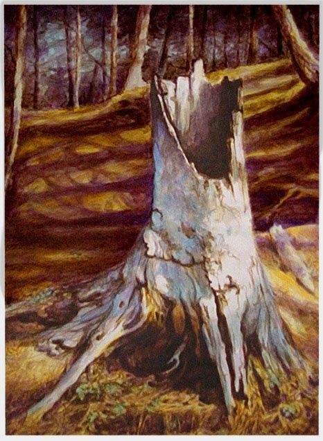 An Old Tree Stump In Algoquin Park Watercolour Painting By Greg