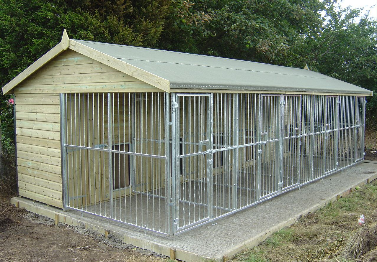 Dog kennels dog kennels and galvanised dog runs field for Amish dog kennel plans