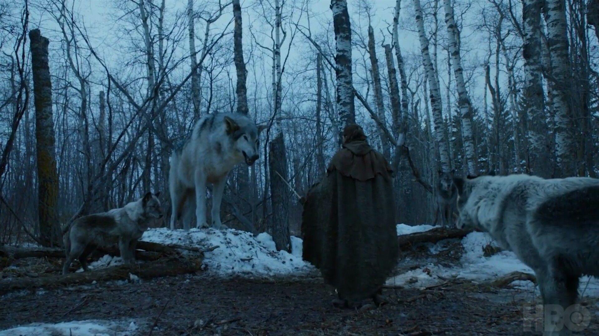 Arya Stark Nymeria 7x2 Stormborn Game Of Thrones Wiki