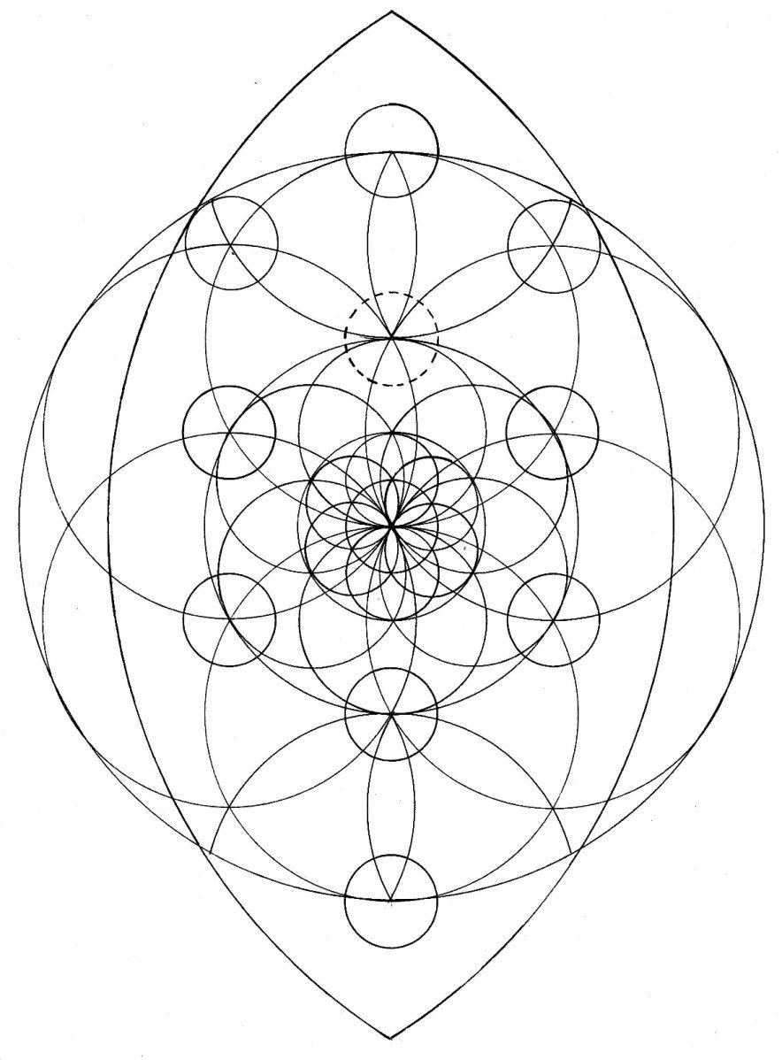 Tree Of Life Geom Pinterest Geometry Art Mandala Art And Doodles
