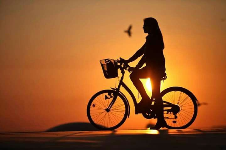 Atardecer Bike Photography Bicycle Girl Silhouette Photography