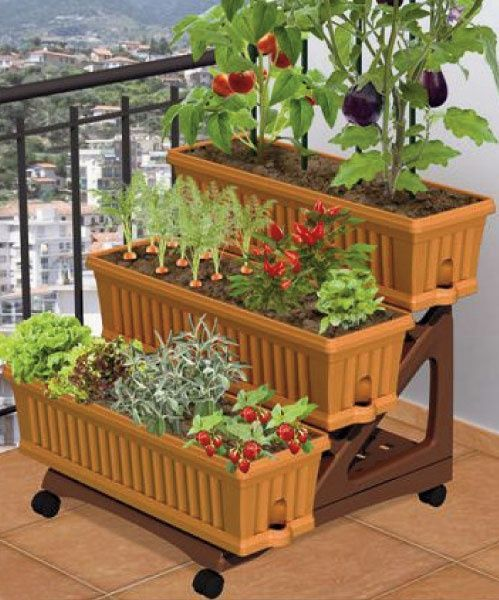 Apartment patio gardens on pinterest apartment garden for Balcony vegetable garden ideas