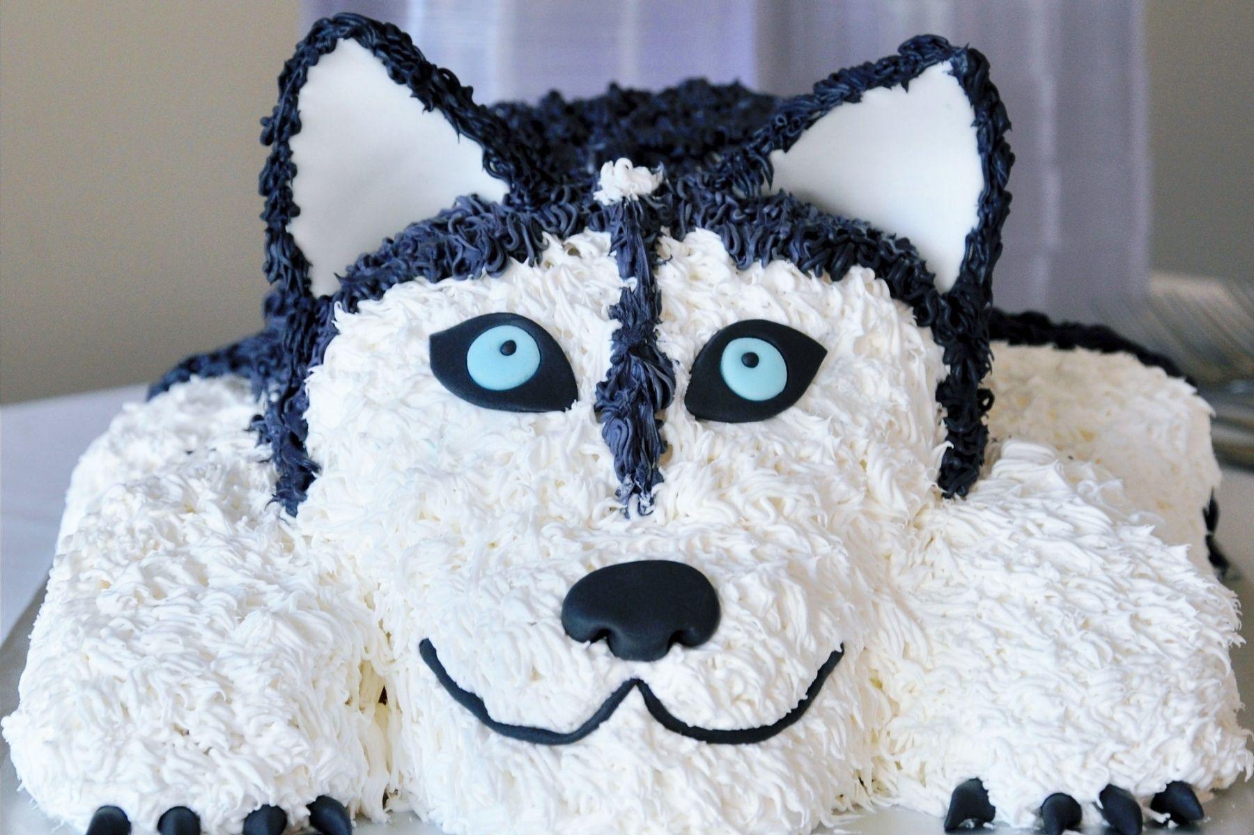 Siberian Husky Sasha Groom S Cake Food And Drinks