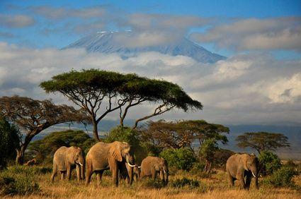 Pin Von Babs Babas Auf Babasgraphie Afrika Landschaft Tansania