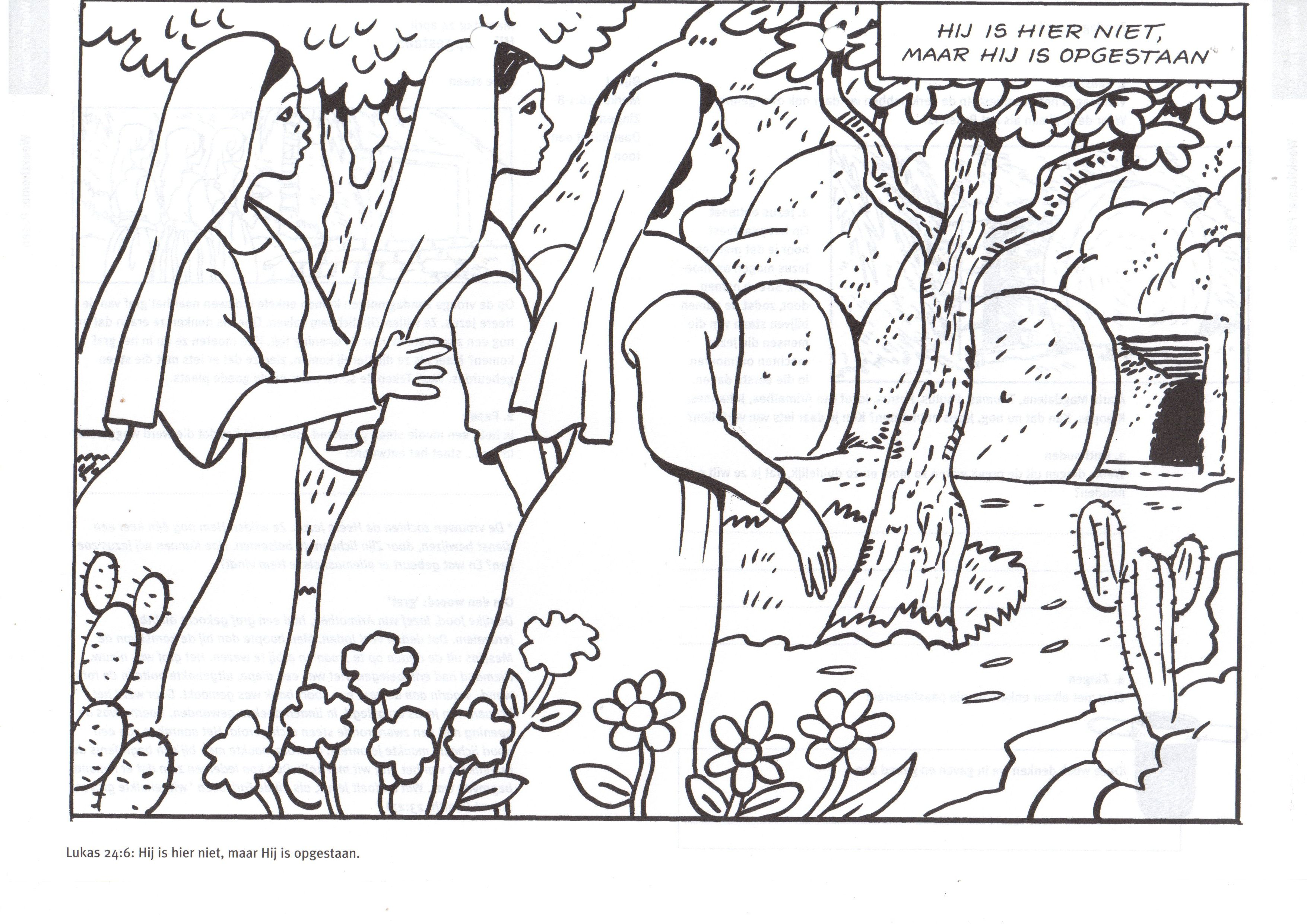 Pin By Catherine Sloan On Biblical Stu S